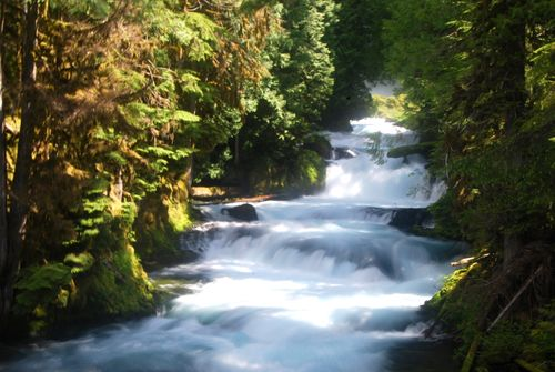 Waterfall on the way up the Santiam Pass